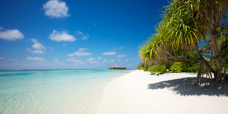family holidays at lux maldives - header